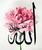 Allah in a Flower