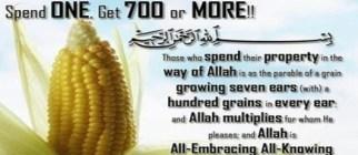 Corn 7 Ears One 1 Multiplied by 700 Exchange Akhira