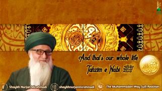Shaykh Nurjan Mirahmadi, gold muhammad emblem, gate, tahzim e nabi, logo