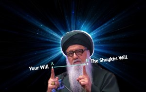 Shaykh Nurjan Mirahmadi - showing A to B with fingers-the tariqa,secret of the path,your will to the shaykhs will