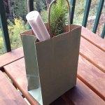 seedlings wedding gift bag