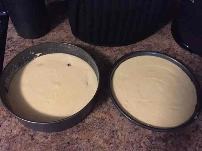 Cake Batter in Cake Pans