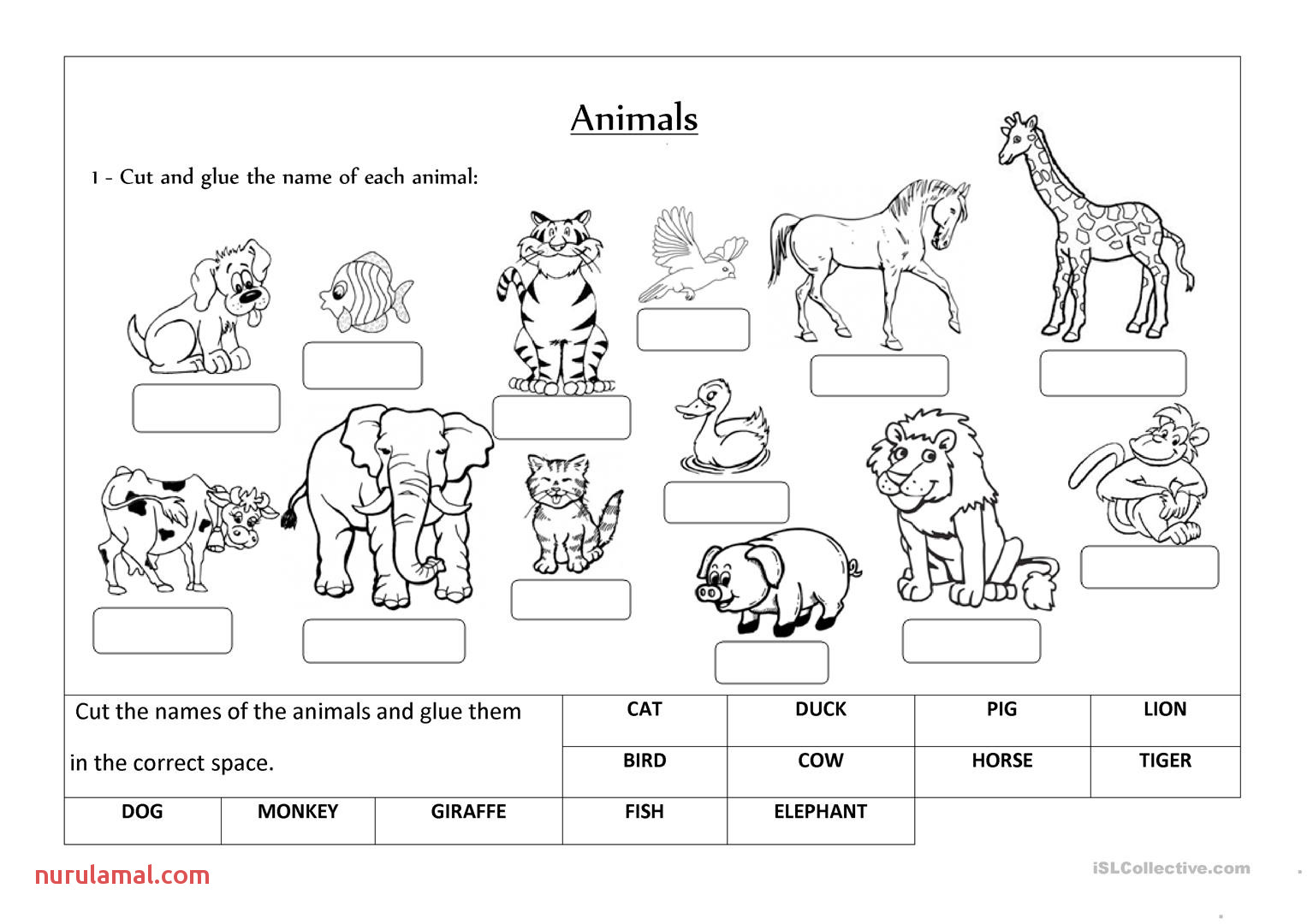 Animal Worksheets Preschool Cutting Skills