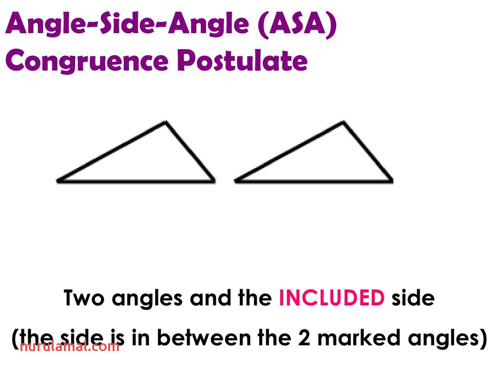 Worksheets Congruent Triangles