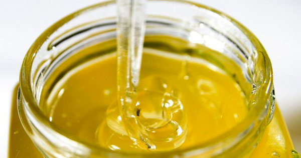miele di corbezzolo effetto antitumorale cancro colon