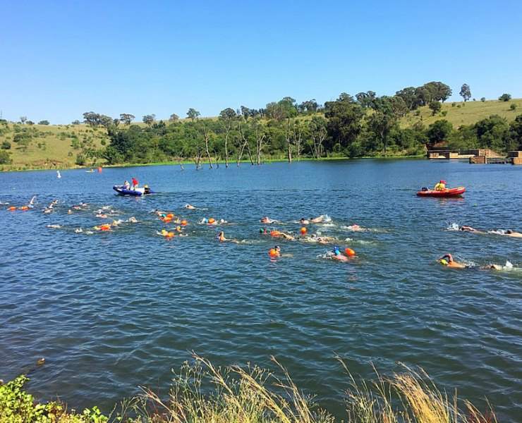 Midmar Mile Diary Part 2: What Open Water Swimming is Really Like