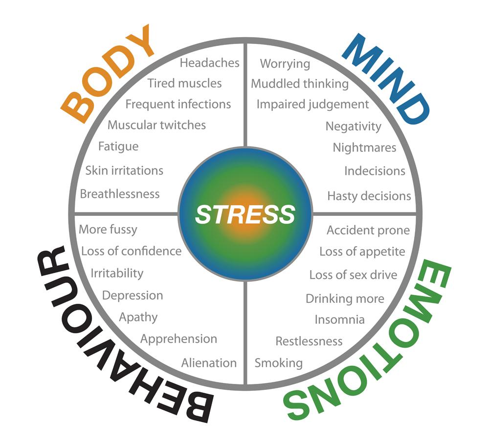 Resultado de imagem para imagens sobre stress adrenal