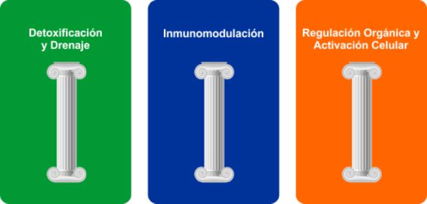 homotoxicologia - nutrição integrativa