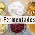 alimentos fermentados