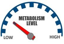 metabolismo.peso
