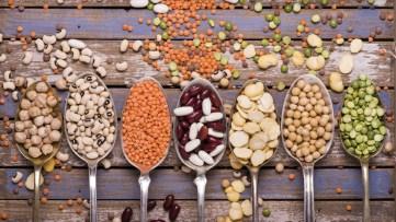 Végétariens, voici comment optimiser votre apport en protéines