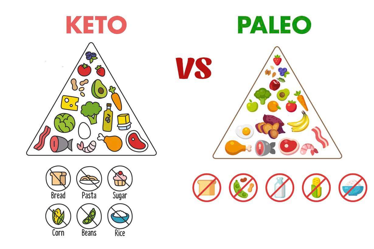 25 Food Pyramid Printable Pics