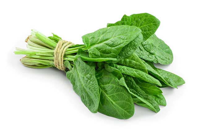 Bundle of Spinach Leaves Held Together By String.