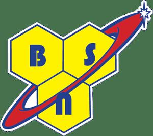 BSN-logo-ACD7D3396F-seeklogo.com_.png