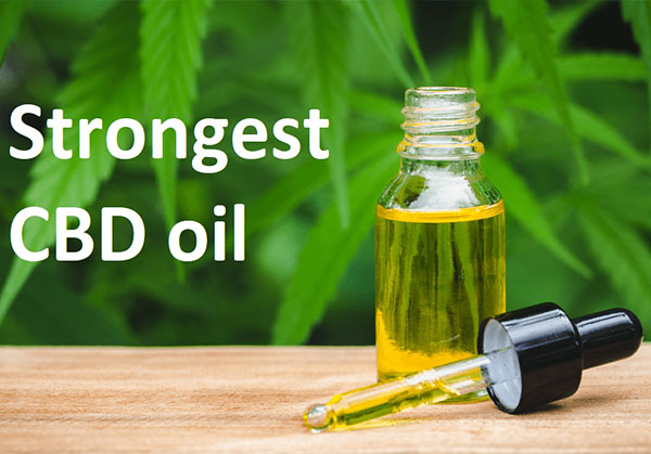 You are currently viewing Strongest CBD Oil