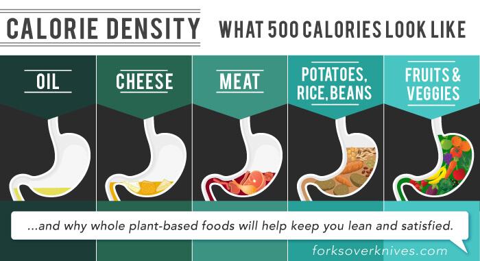 calorie-density