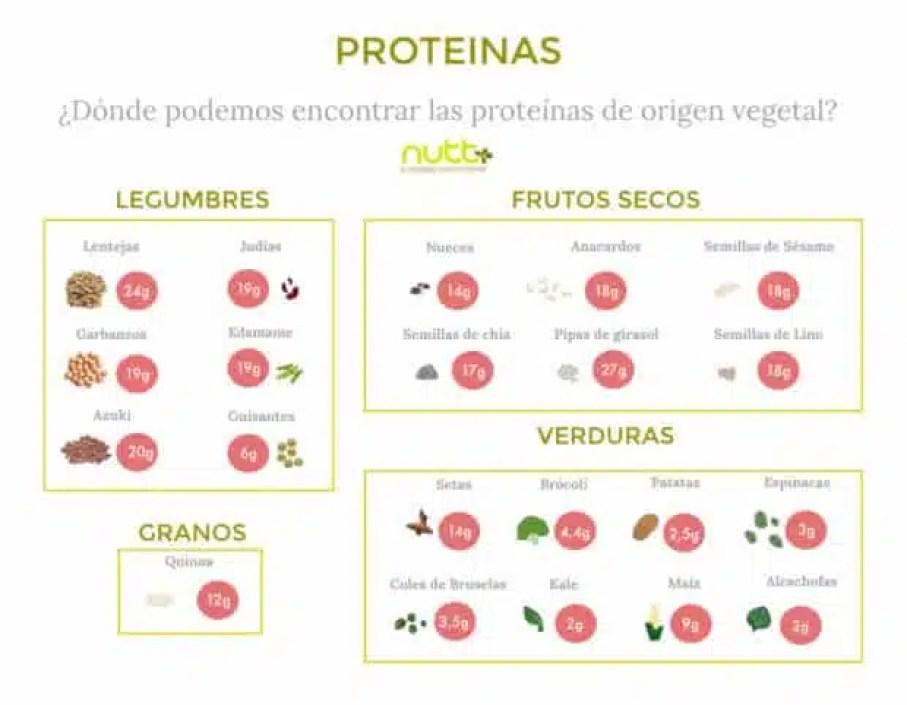 proteinas-vegetales-proteinas-animales-nutricion-nutricionista-valencia-nutt-elisa-ecorihuela