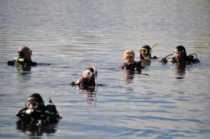 diving essex