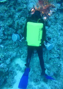 Rebreather training Egypt