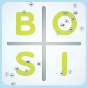 BOSI Dna Team Entrepreneur Assessment