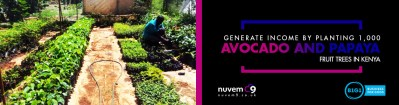 Generate Income by Planting 1,000 avocado and papaya fruit trees in Kenya