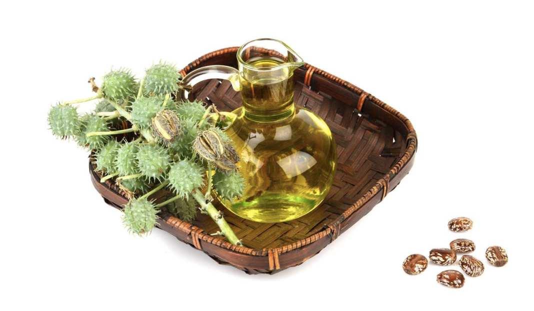 Castor Oil - Olio di Ricino