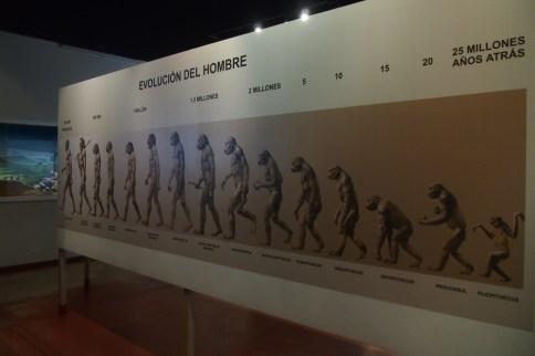 bizim okullarda evrim teorisi işlenmezken :/