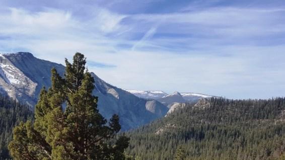 Tioga Road Yosemite