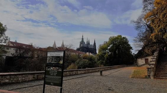 Prague Belvédère