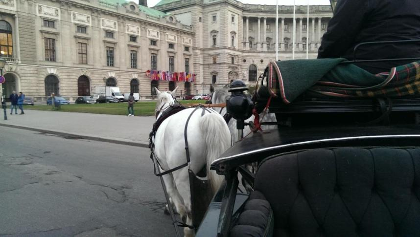 Balade en fiacre Vienne
