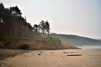 Cape Lookout Oregon Coast