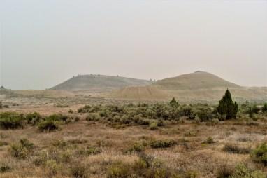 Leaf Fossil Trail Oregon