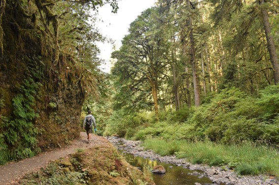 Ten Falls Trail Oregon