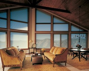 Lone Tree, Colorado Hunter Douglas silhouette window shadings