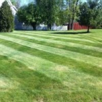 NVS-Landscaping-Lawn-Mowing-02