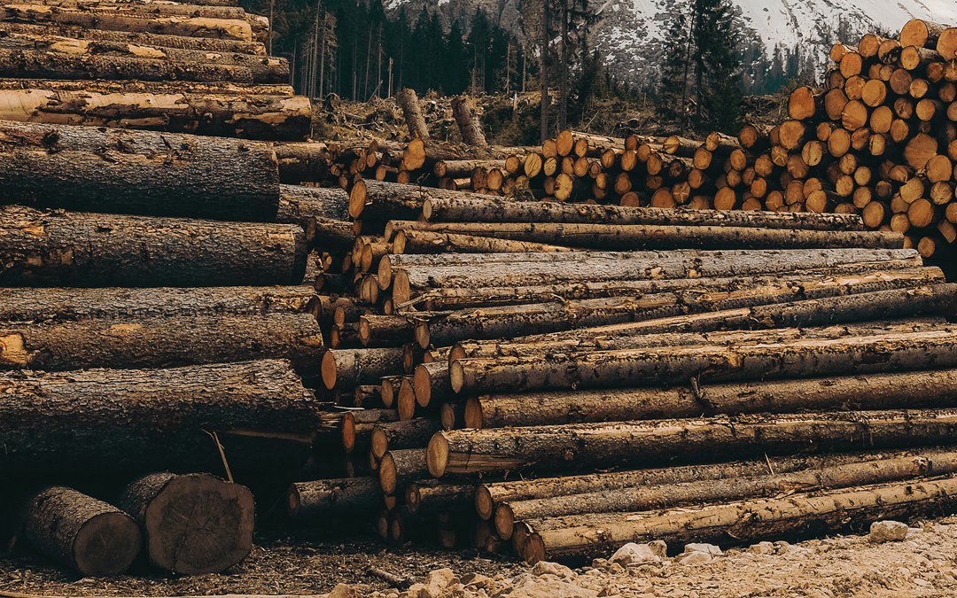 Lumber Tariff Prices Drop NAHB