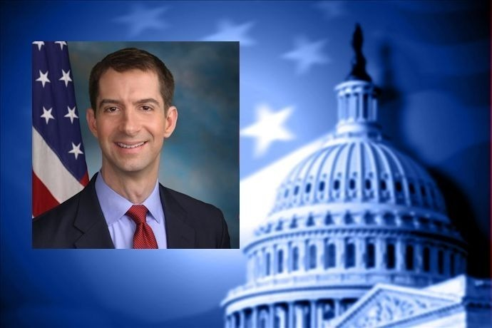 tom cotton_6867646080639846335