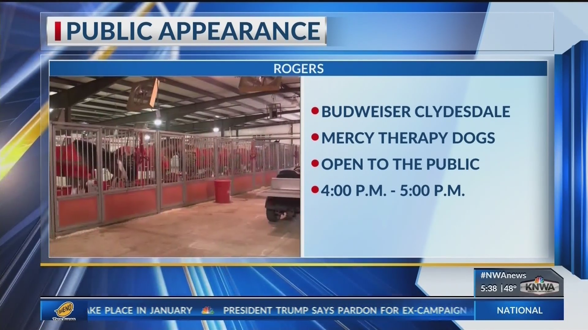 Budweiser_Clydesdale_Making_Appearance_i_0_20181129123902