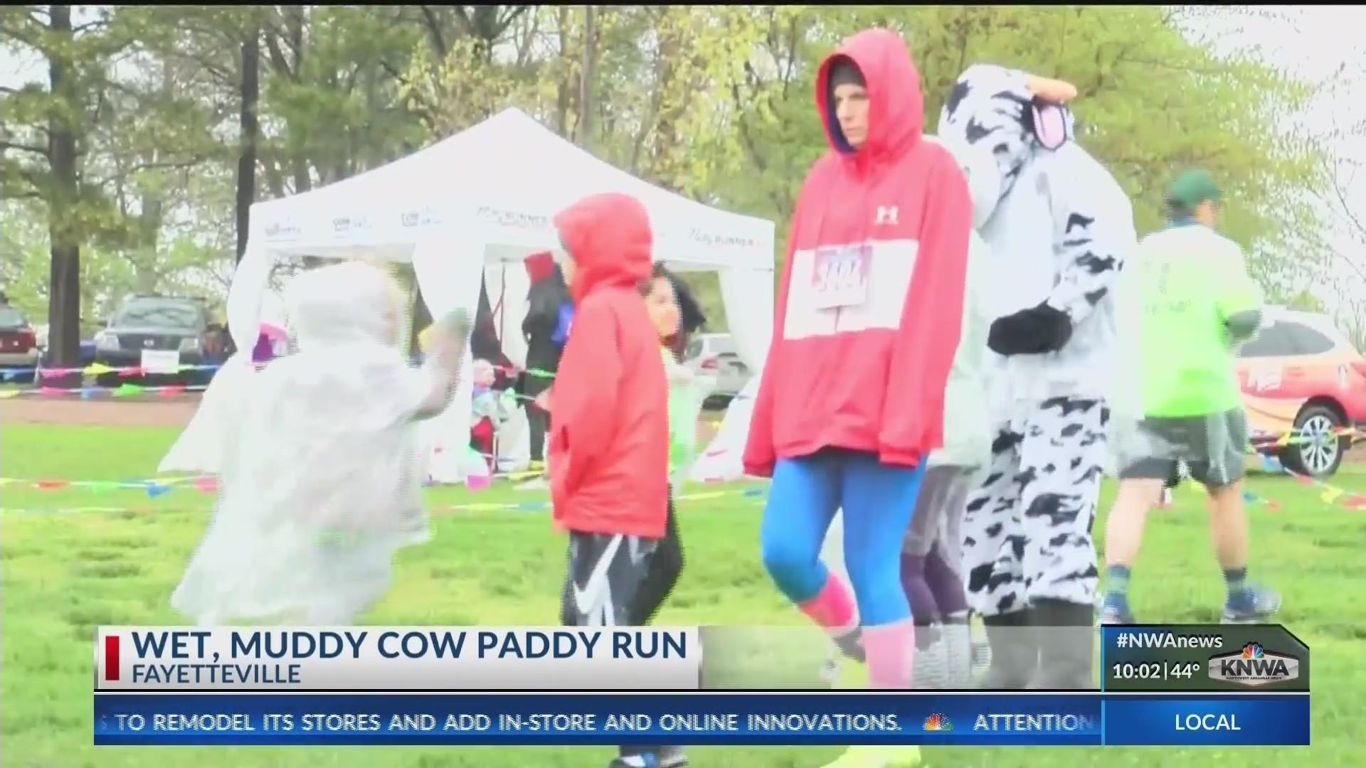 Cow_Paddy_Run_Fun_0_20190414031255