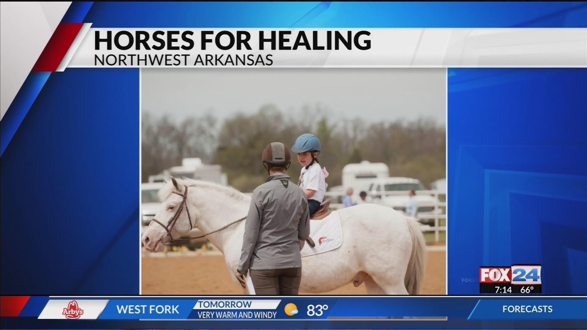Fox_24_News_at_7__Horses_for_Healing_Cha_0_20190410122303