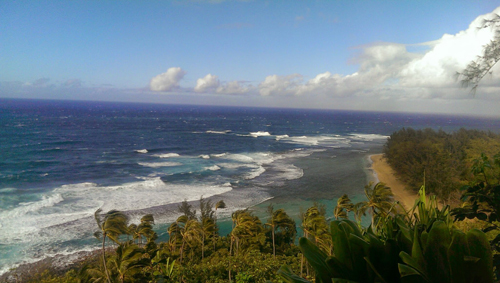 https://i2.wp.com/www.nwasianweekly.com/wp-content/uploads/2016/35_02/nation_hawaii.jpg?resize=500%2C283
