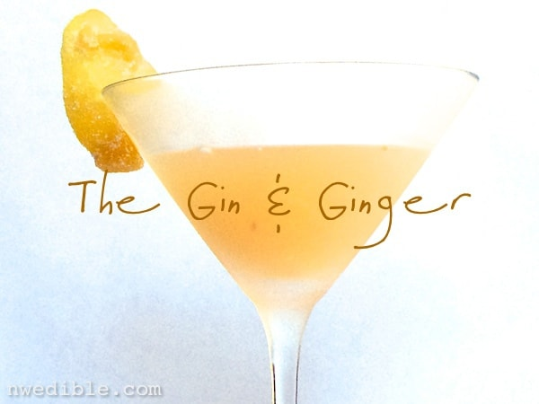 Gin & Ginger Cocktail