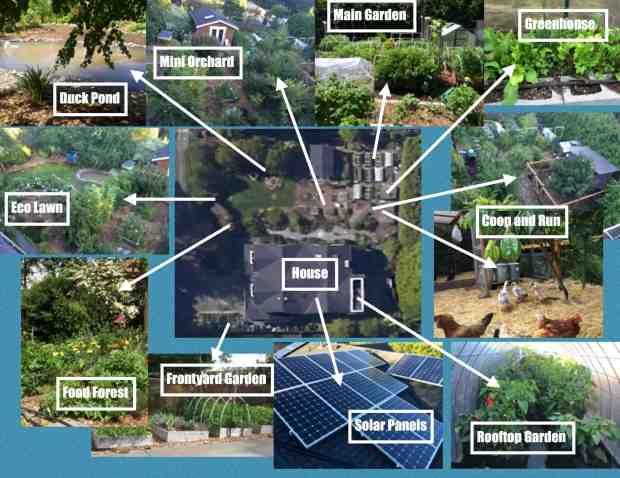 Homestead Photo Collage