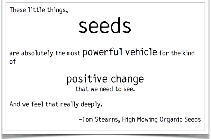 {Giveaway} Can Seeds Save The World? A Conversation with Tom Stearns of High Mowing Organic Seeds.