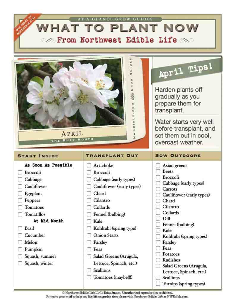 FREE Downloadable - everything you need to know about what to plant in the April Vegetable garden.