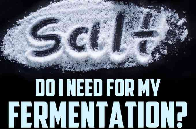 How Much Salt Should I Use For My Fermentation?