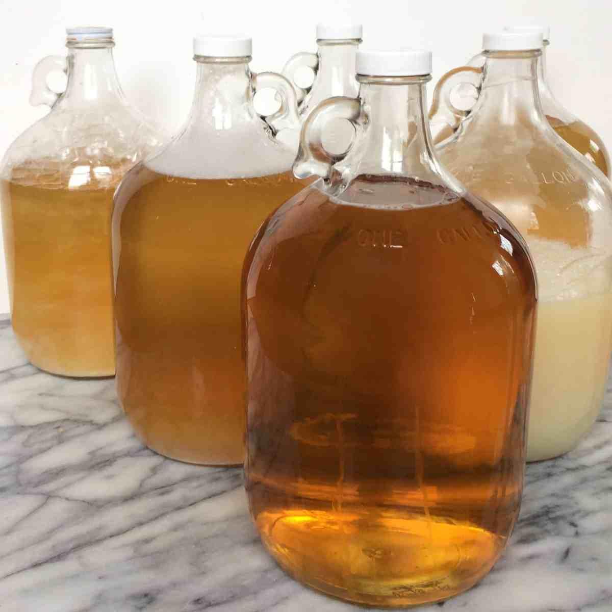 How To Make DIY Liquid Castile Soap   Northwest Edible Life