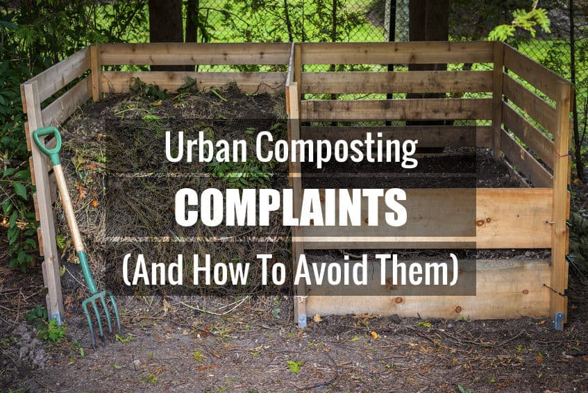 urban composting complaints u0026 how to avoid them northwest edible life