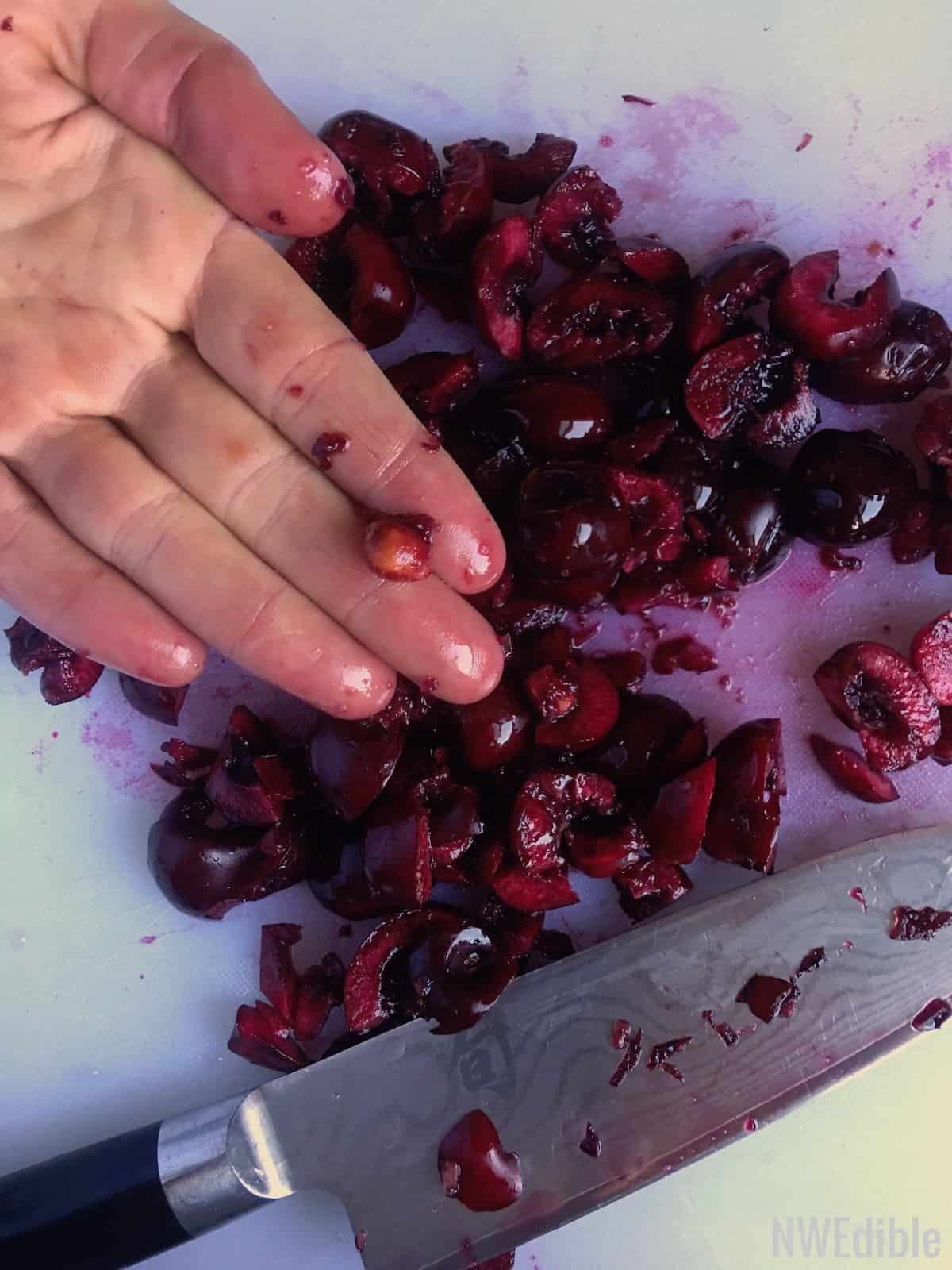 Cherry Salsa1001