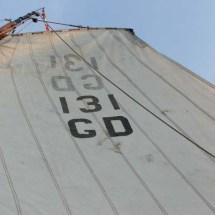 DSCF3562